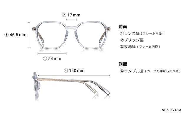 Eyeglasses +NICHE NC3017J-1A  クリア
